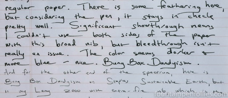 Bung Box Dandyism writing sample