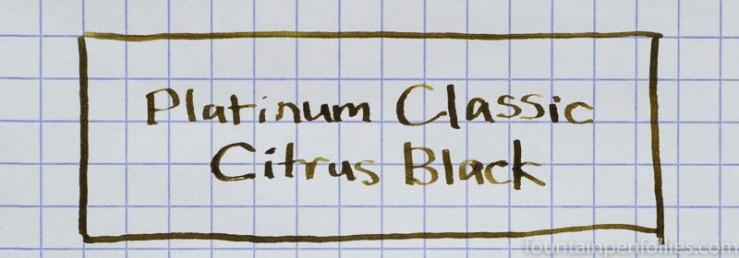 Platinum Citrus Black writing sample